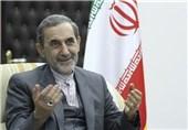 Iran, Pakistan Should Do More to Fight Extremism: Velayati