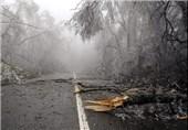 Mass Destruction Feared after Cyclone Hits Vanuatu