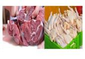 واردات مرغ و گوشت کشور دست چند نفر است؟