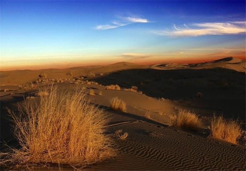 عکس/ بهشتی در وسط بیابان