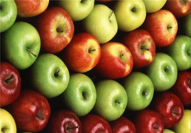 تولید محصولات کشاورزی ارگانیک در کهگیلویه و بویراحمد مغفول واقع شده است