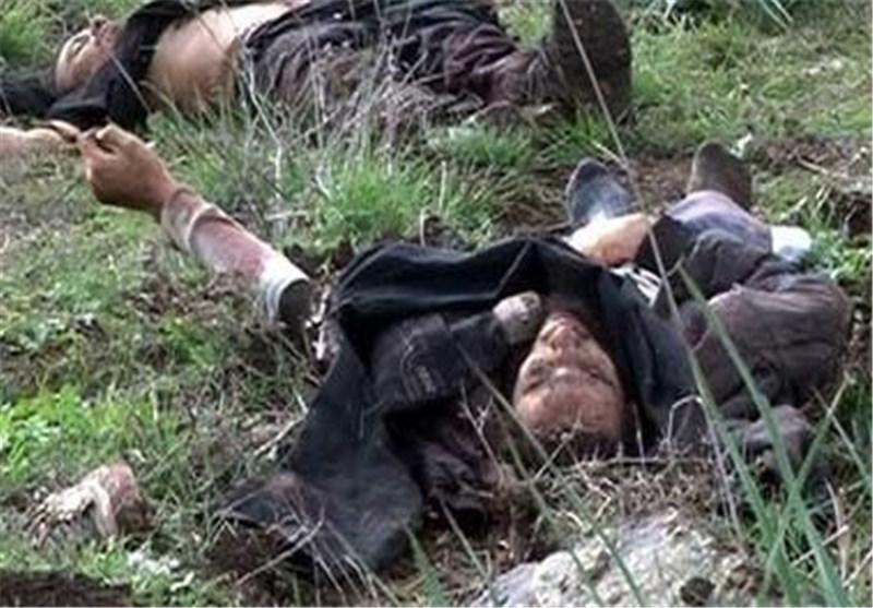 مقتل 16 ارهابیا أفغانیاً فی هیت واعتقال وزیر صحة داعش قرب کربلاء