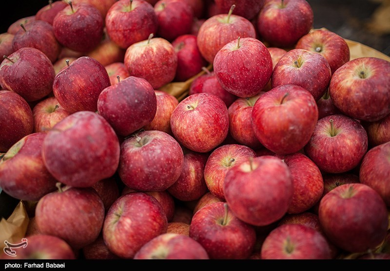 مراکز عرضه محصولات ارگانیک در هرمزگان راهاندازی میشود