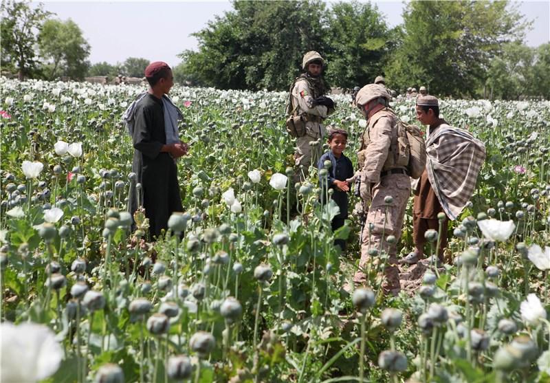 تریاک در افغانستان