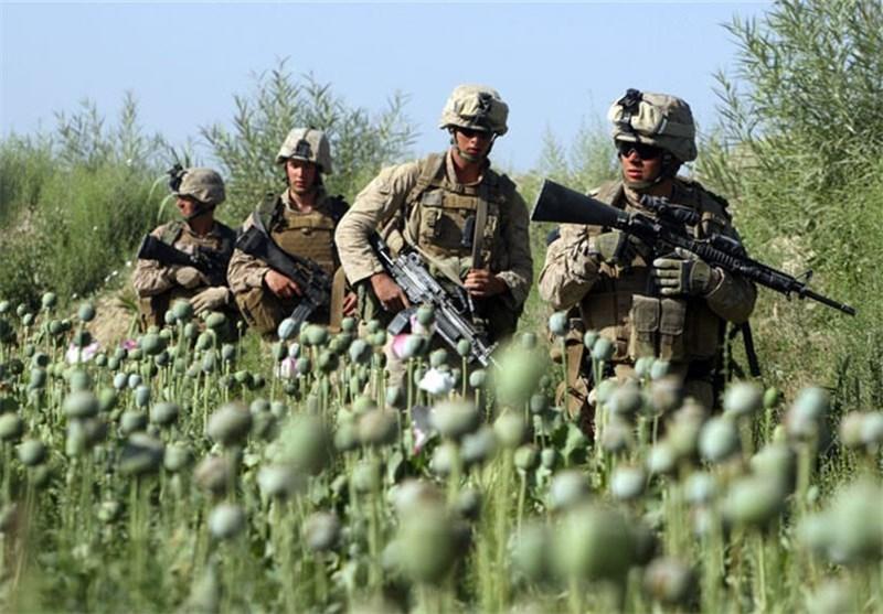 افغانستان میں کاشت ہونے والی افیون کے پاکستان پر اثرات