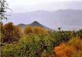 شورای حفاظت از اراضی در شهرستان پلدختر تشکیل میشود