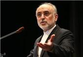 صالحی: یجب على الحکومة الامریکیة الجدیدة تنفیذ الاتفاق النووی