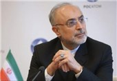 Official: Iran's Second Power Plant to Become Operational in 8 Years