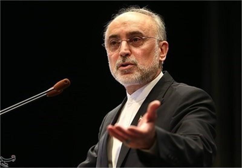 صالحی: الامام الخامنئی أکد أن تخصیب الیورانیوم بنسبة 20% هو المستوی المطلوب
