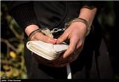 دستگیری 69 سارق و زورگیر