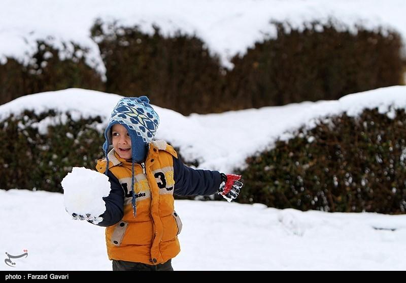 برف بازی کرمانی ها
