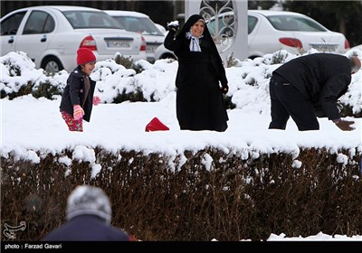 Snow Falls in Iran's Desert City of Kerman
