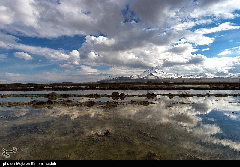 طبیعت زمستانی تالابهای اطراف دریاچه ارومیه