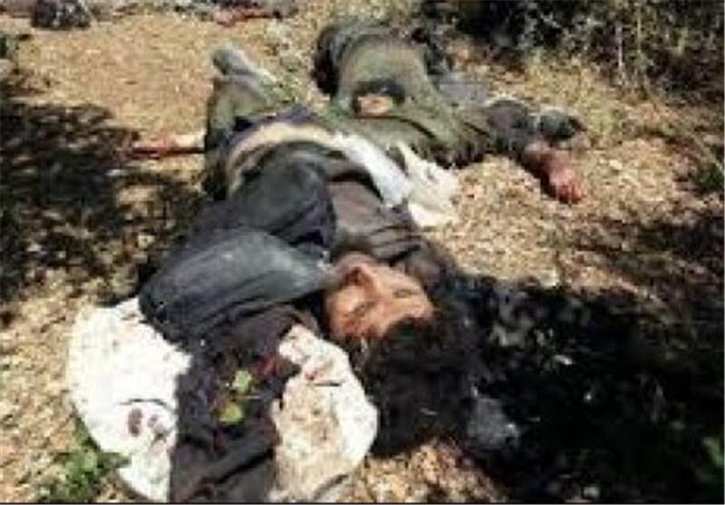 مقتل القائد المیدانی لداعش خلال المعارک مع الوحدات الکردیة فی مدینة عین عرب السوریة