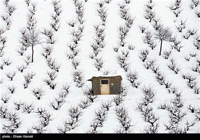 Iran's Beauties in Photos: Winter in North Khorasan