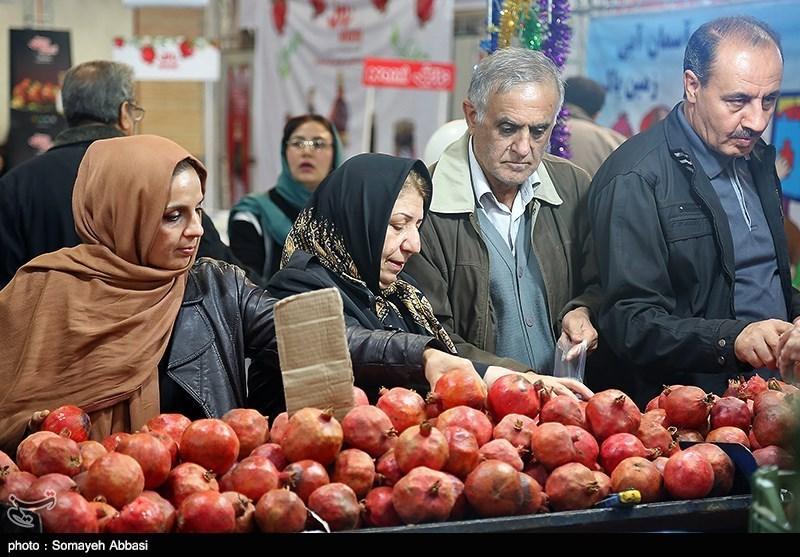 هفتمین جشنواره هفته ارگانیک تهران