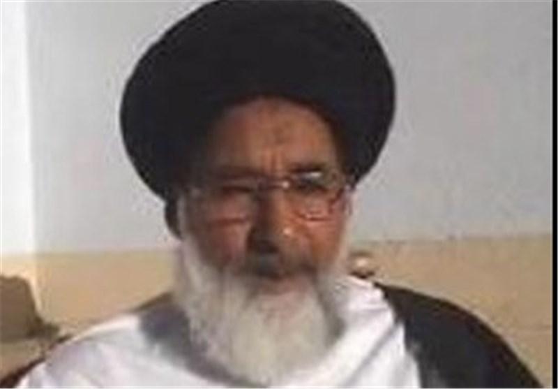 سناتور باکستانی سابق: الثورة الاسلامیة فی ایران، وضعت الغرب وأمریکا أمام تحدیات کبیرة