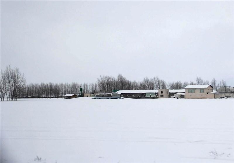 برف اردبیل16