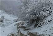 تمامی راههای استان گیلان باز است