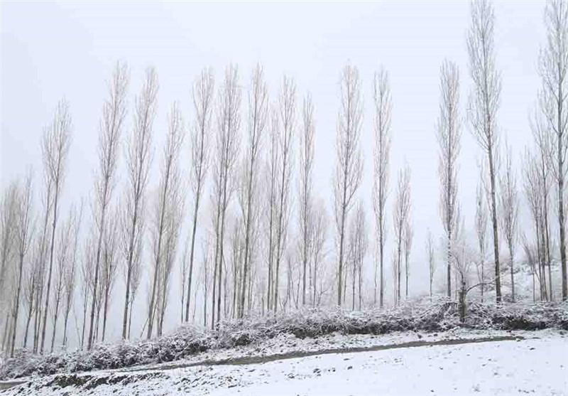 بارش دومین برف پاییزی در گیلان