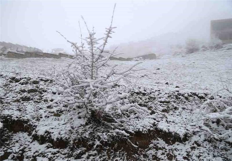 بارش برف در دامنههای کوهستان استان گیلان ادامه دارد