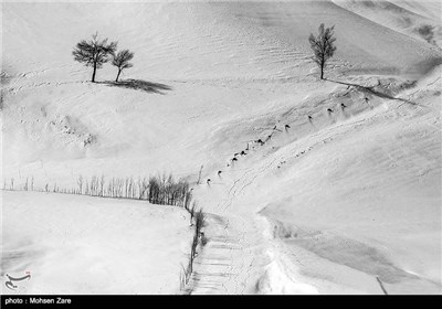 Iran's Beauties in Photos: Winter in Ardebil