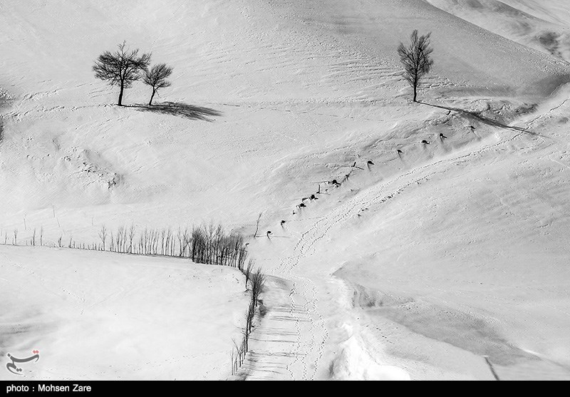 Ardabil's winter - IN PHOTOS