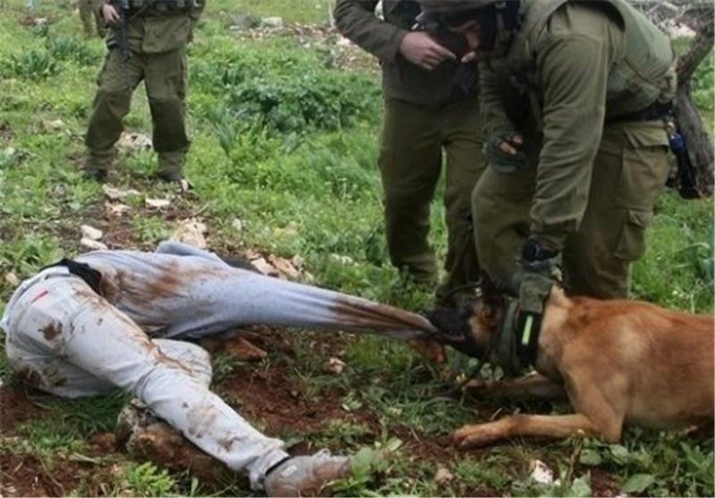 الوحشیة الصهیونیة