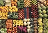 کاهش قیمت محصولات کشاورزی با شبکه توزع تعاونیها