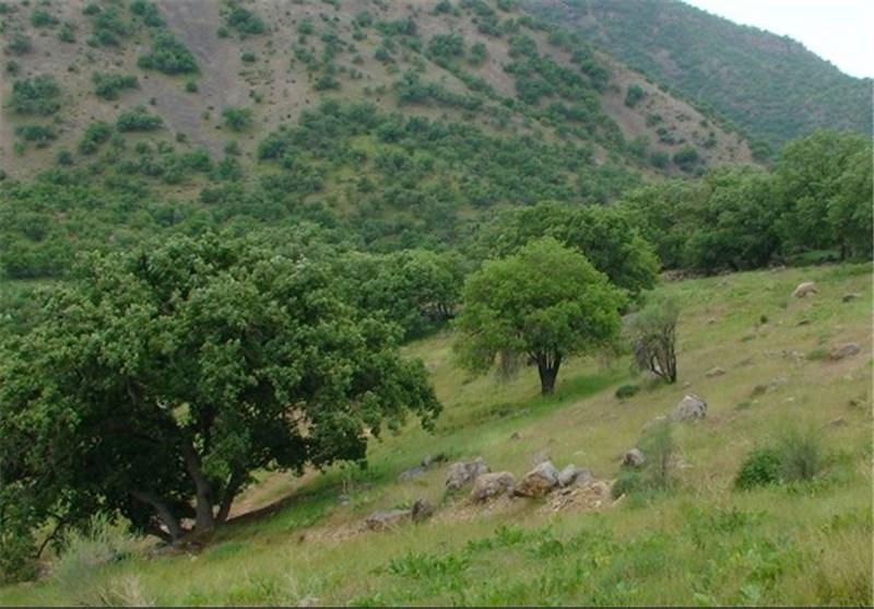 فرماندار ساری: طرح اقتصادی استانهای سمنان و مازندران با پیوست گردشگری ایجاد میشود