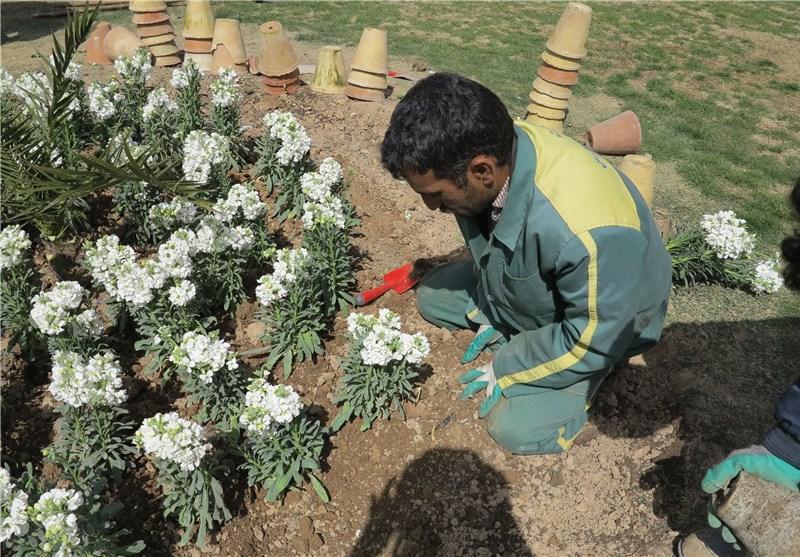 رونمایی از 1200 المان نوروزی مشهد/گلکاری در تمام شهر انجام میشود