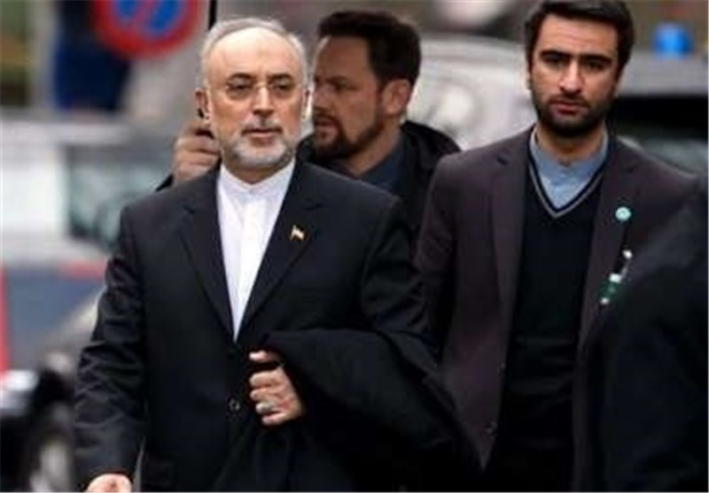 Iran's Fact Sheet on Lausanne Statement Ready: AEOI Chief