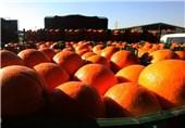 طرح محدودیت صادرات میوه تا پایان رمضان در دستور کار ستاد تنظیم بازار قرار گرفت