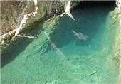 غار ماهی کور لرستان1