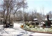 باغ فدک بروجرد4