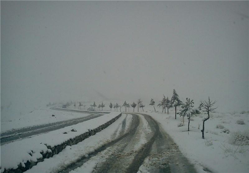 بارش رحمت الهی بر شکوفههای بهاری در خراسان رضوی+ تصاویر