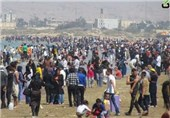 اقامت 17000 گردشگر در استان بوشهر