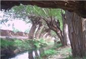 چشمه و طبیعت غربالبیز مهریز