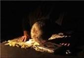 """""""سجده سهو"""" در نماز چه زمانی واجب میشود؟"""
