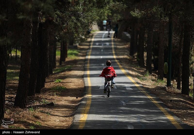 شهرداری 3.5 سال است که آببهای پارک چیتگر را نپرداخته