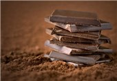 Chocolate Ingredients Could Help Prevent Obesity, Diabetes