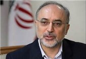 Iran's Nuclear Chief: Fordow Site to Remain as R&D Center