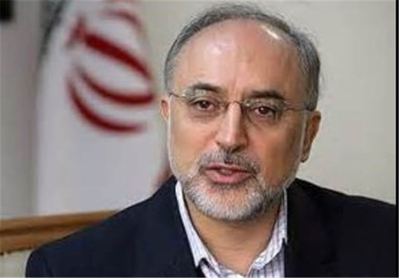 AEOI Chief: Iran Produces High Speed Centrifuges