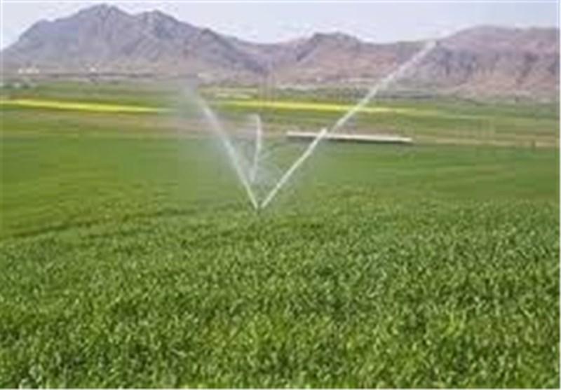 سیمای کشاورزی استان قزوین در سالی که گذشت2