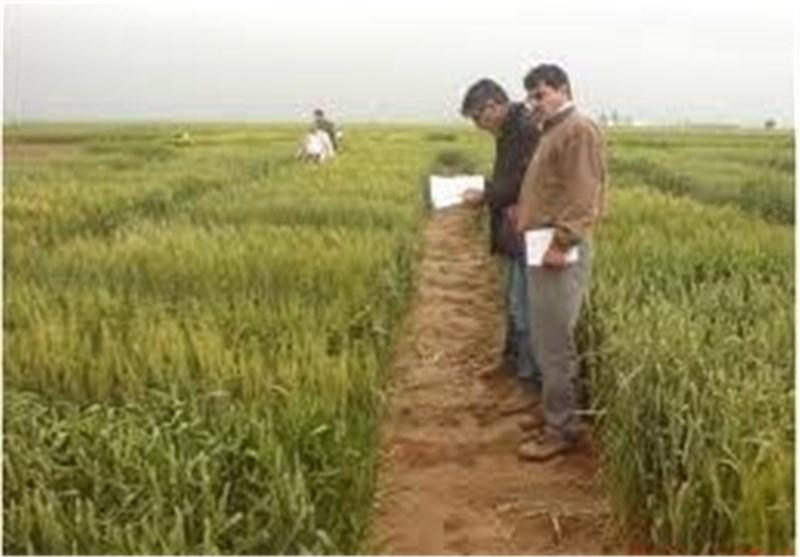 ایستگاه تحقیقات کشاورزی