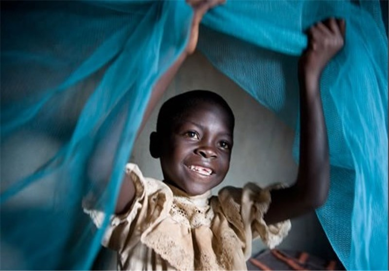 Immune System Protects Kids from Malaria