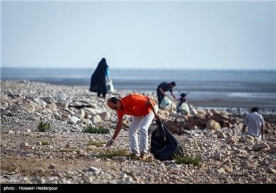 قیمت زمین بوشهر