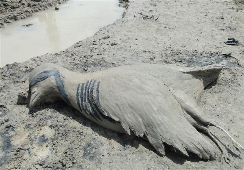 اختتامیه جشنواره ملی مجسمههای نمکی در تالاب کجی نمکزار نهبندان برگزار میشود