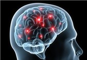 Impact of Traumatic Brain Injury on Longterm Memory Explored