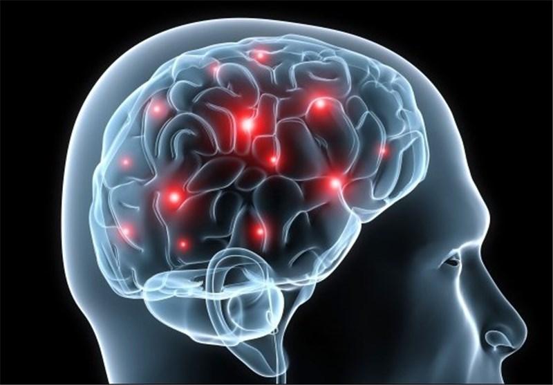 Mild Traumatic Brain Injury Causes Long-Term Damage in Mice